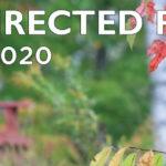 2020-Silent-Directed-Retreat-Web-Slider